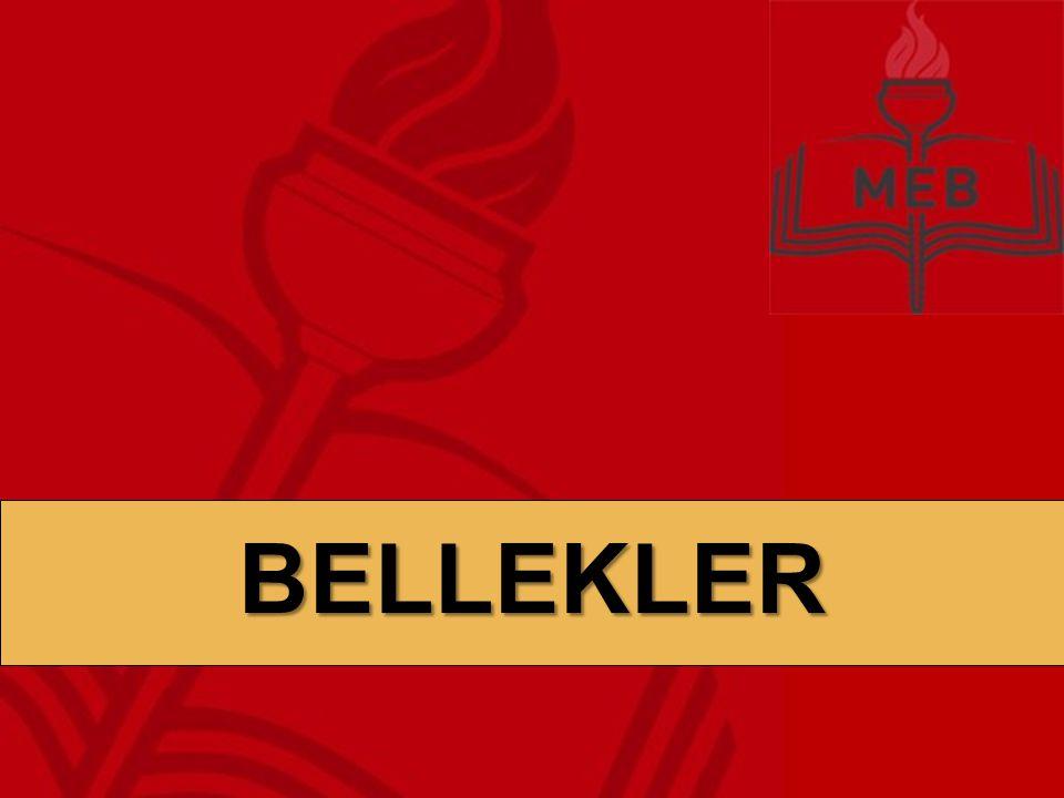 BELLEK BİRİMLERİBELLEKLER