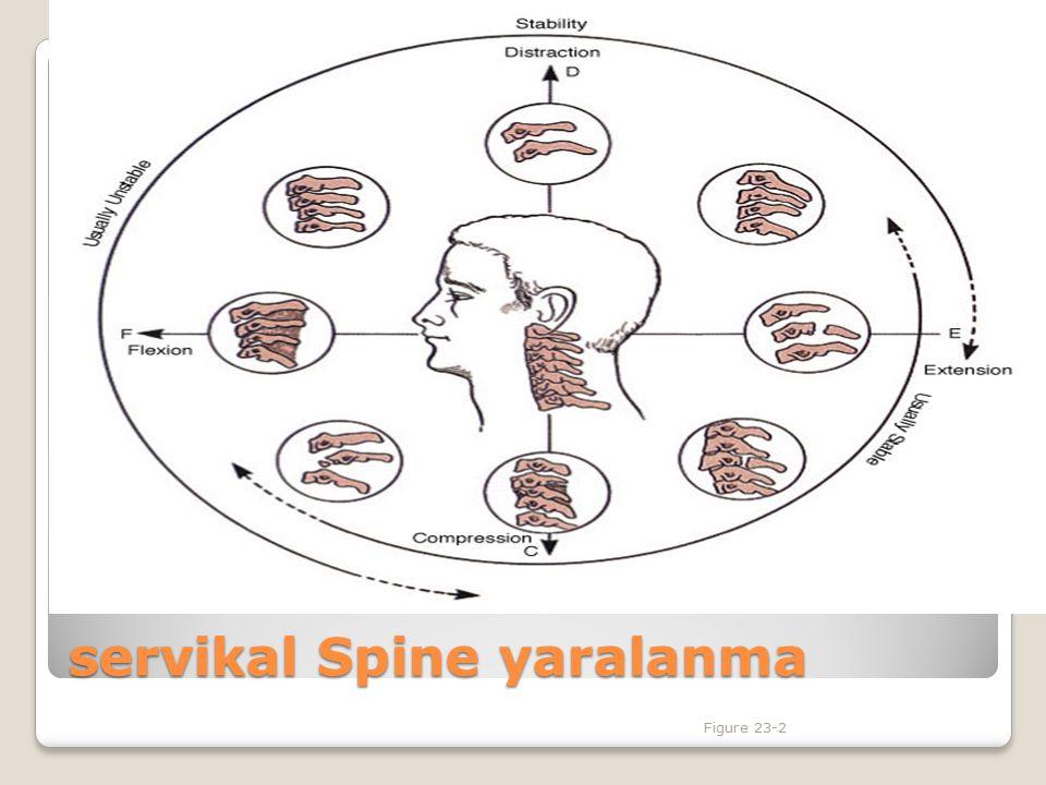 İmmobilizasyonda temel hedef Kafa ve vertebralar düz bir hat üzerinde sabit olarak korunmalıdır.