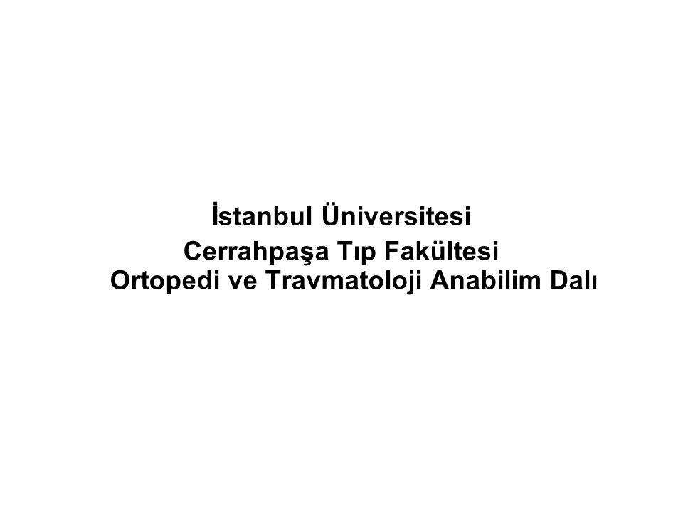 Cerrahpaşa Tıp Fakültesi Ortopedi ve Travmatoloji Anabilim Dalı 2013-Ortalama Yatış (Gün)