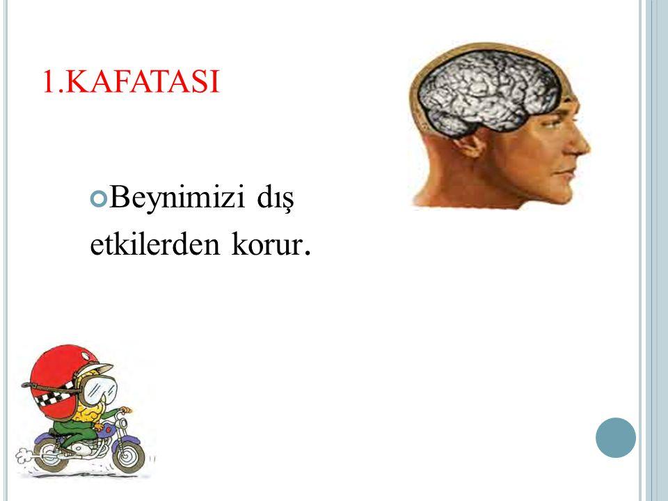 1.KAFATASI Beynimizi dış etkilerden korur.