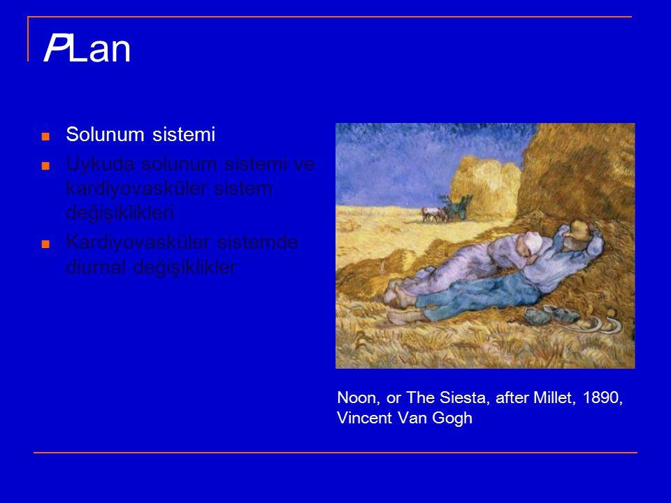 PLan Solunum sistemi Uykuda solunum sistemi ve kardiyovasküler sistem değişiklikleri Kardiyovasküler sistemde diurnal değişiklikler Noon, or The Siesta, after Millet, 1890, Vincent Van Gogh