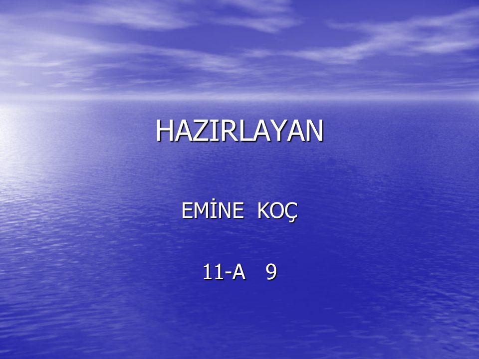 HAZIRLAYAN EMİNE KOÇ 11-A 9