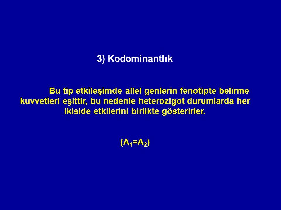 3) Kodominantlık Bu tip etkileşimde allel genlerin fenotipte belirme kuvvetleri eşittir, bu nedenle heterozigot durumlarda her ikiside etkilerini birl