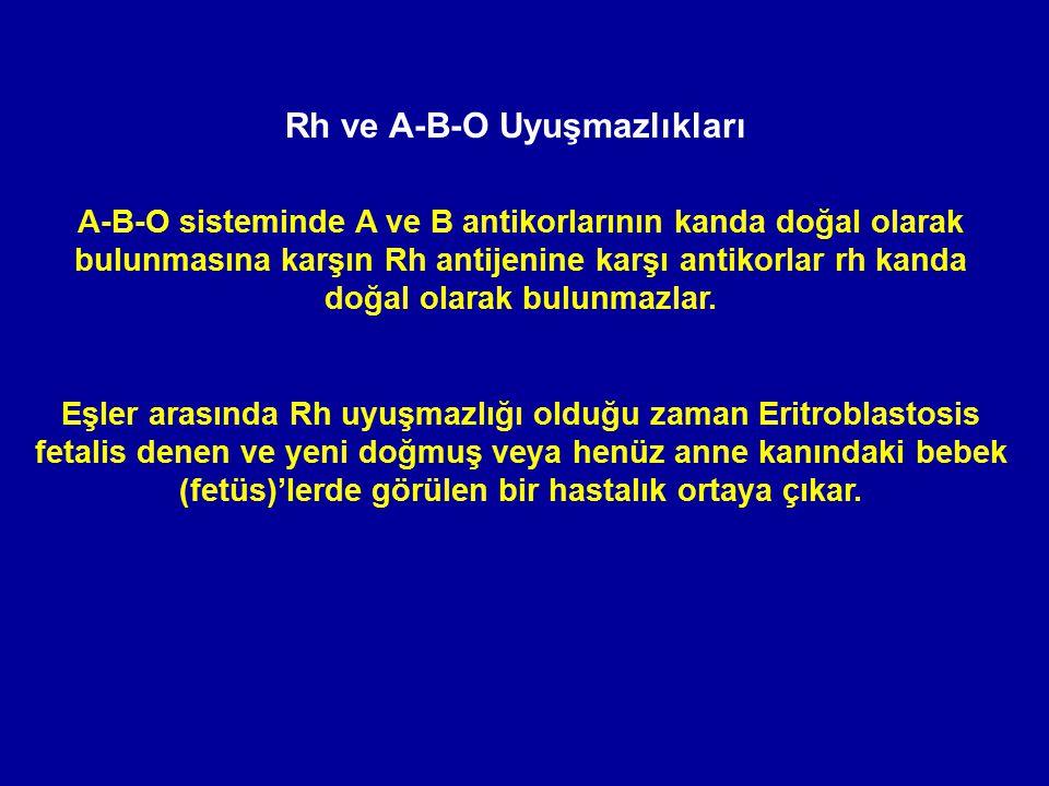 A-B-O sisteminde A ve B antikorlarının kanda doğal olarak bulunmasına karşın Rh antijenine karşı antikorlar rh kanda doğal olarak bulunmazlar. Eşler a