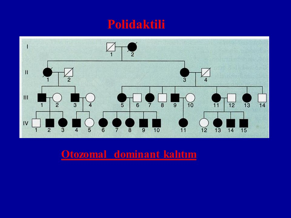 Polidaktili Otozomal dominant kalıtım