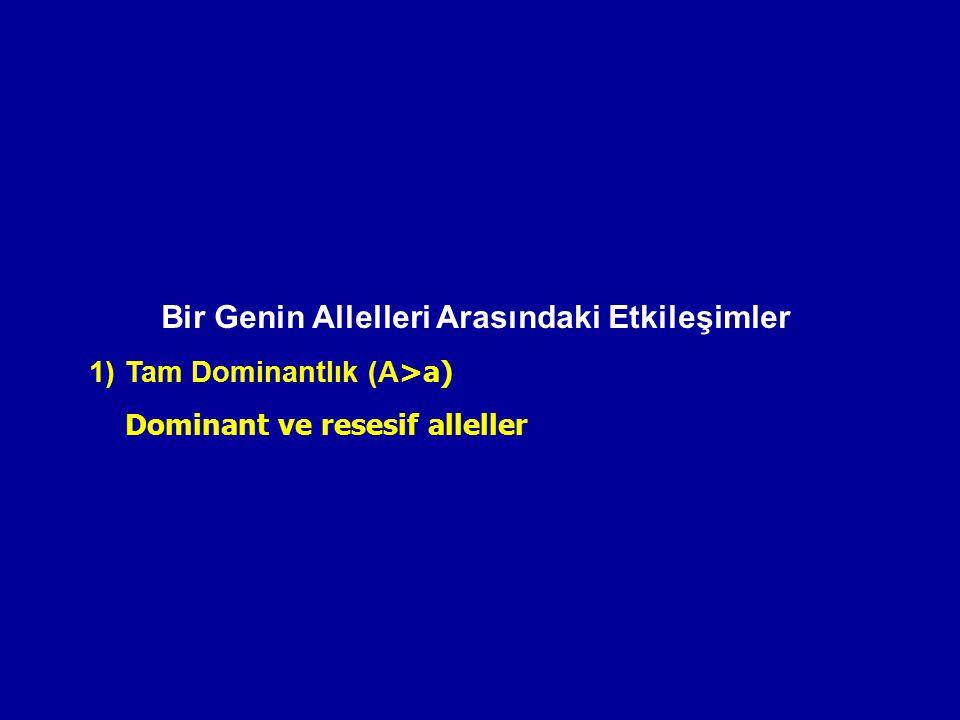 Bir Genin Allelleri Arasındaki Etkileşimler 1)Tam Dominantlık (A >a) Dominant ve resesif alleller
