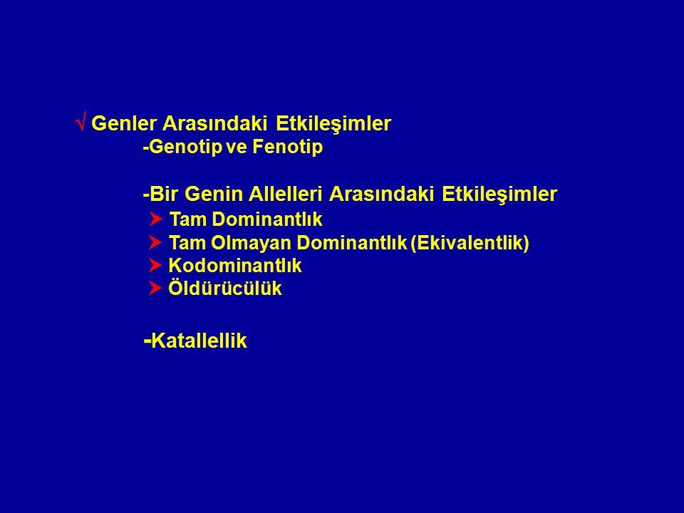 Katallellik (Multipl Allellizm) Yabani tip