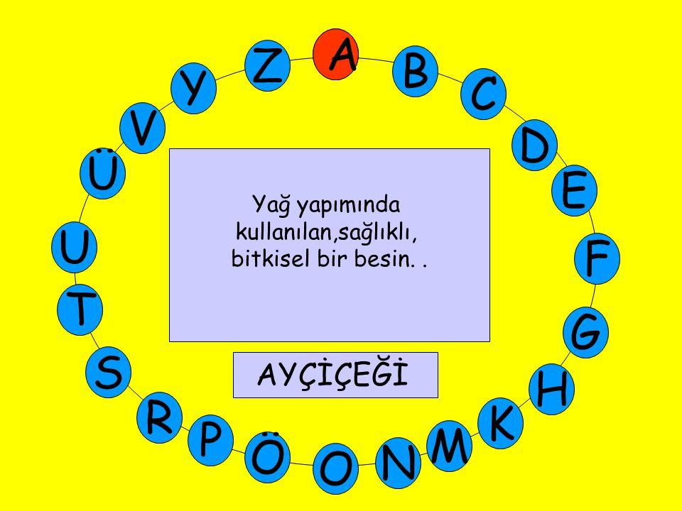 A M Ü V Y Z E D C B A U T G F S P Ö O H K N R B Bol miktarda protein bulunan kuru fasulye, nohut, mercimek gibi besinlerin genel adı Baklagiller