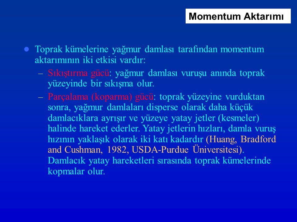 Momentum Aktarımı Toprak kümelerine yağmur damlası tarafından momentum aktarımının iki etkisi vardır: – Sıkıştırma gücü: yağmur damlası vuruşu anında