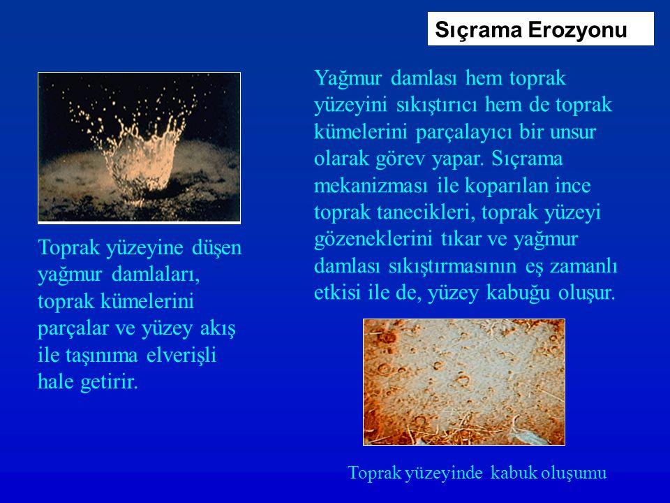 Fırtına100,03,008,40010 4 İntensite (mm saat -1 ) Damla orta değeri (d 50, mm) Düşme hızı (m s -1) Kinetik enerji (kJ m -2 saat -1 )