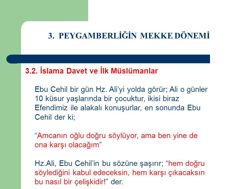 3. PEYGAMBERLİĞİN MEKKE DÖNEMİ 3.2. İslama Davet ve İlk Müslümanlar Ebu Cehil bir gün Hz. Ali'yi yolda görür; Ali o günler 10 küsur yaşlarında bir çoc