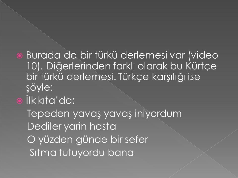  Burada da bir türkü derlemesi var (video 10). Diğerlerinden farklı olarak bu Kürtçe bir türkü derlemesi. Türkçe karşılığı ise şöyle:  İlk kıta'da;