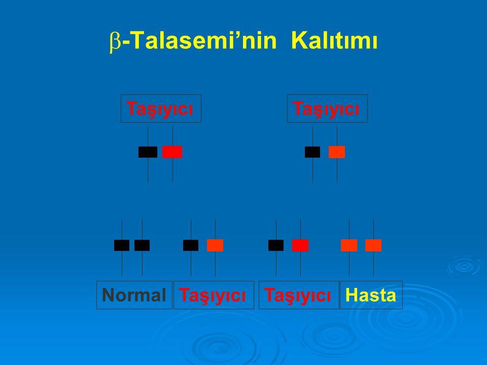   -Talasemi'nin Kalıtımı Taşıyıcı HastaNormal