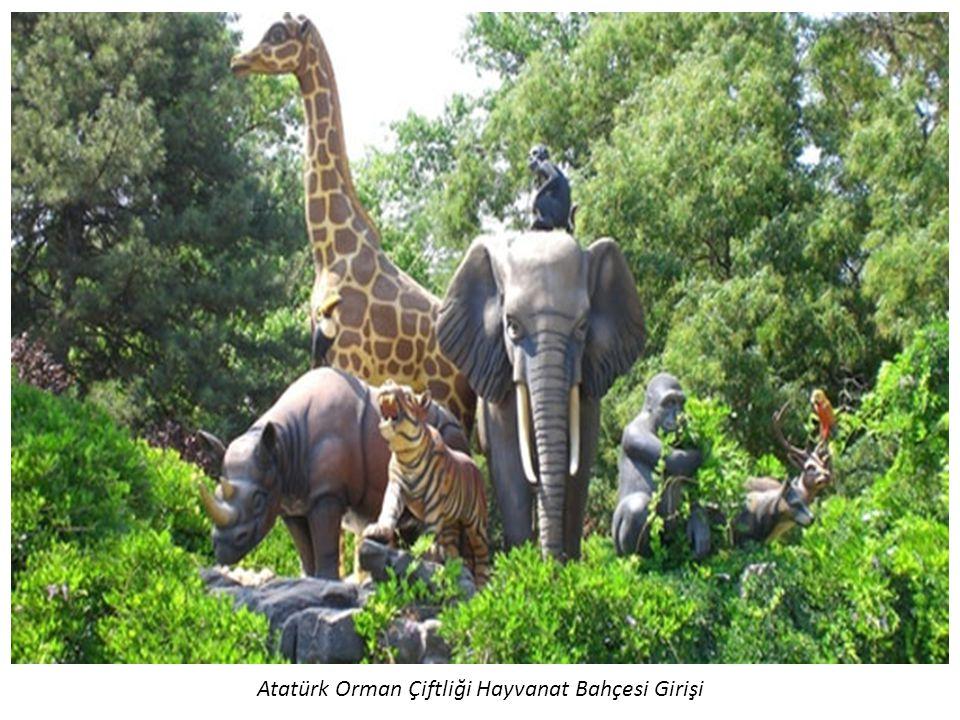 Atatürk Orman Çiftliği Hayvanat Bahçesi Girişi