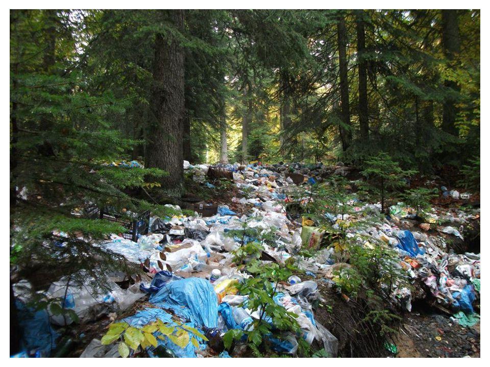 İnsanların doğal ortamı değiştirme ve ondan yararlanma şekillerine verilebilecek örneklerden biri de Atatürk Orman Çiftliğidir.