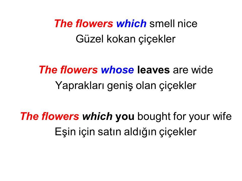 The flowers which smell nice Güzel kokan çiçekler The flowers whose leaves are wide Yaprakları geniş olan çiçekler The flowers which you bought for yo
