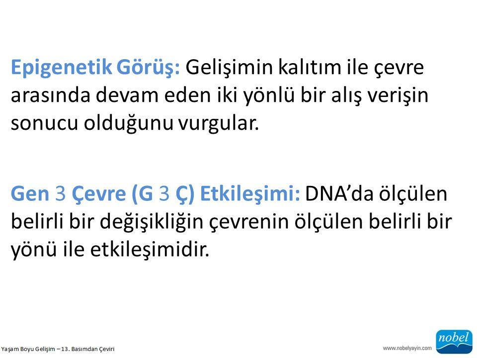 Epigenetik Görüş: Gelişimin kalıtım ile çevre arasında devam eden iki yönlü bir alış verişin sonucu olduğunu vurgular. Gen 3 Çevre (G 3 Ç) Etkileşimi: