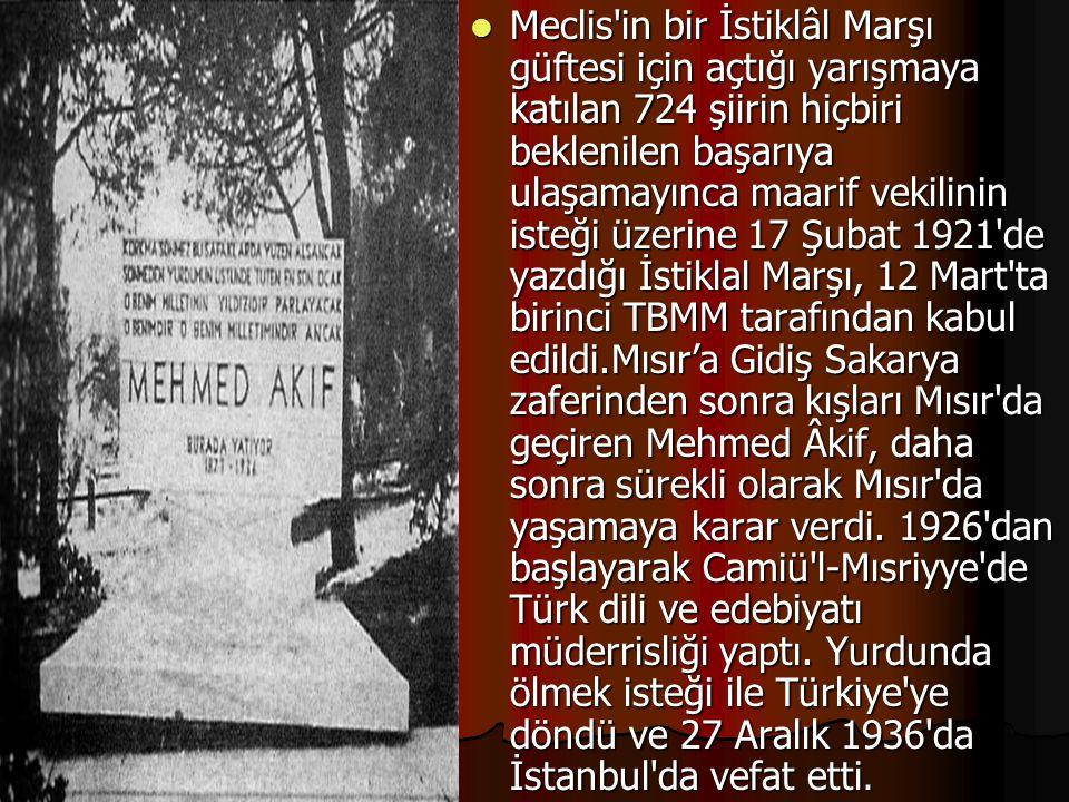 Meclis'in bir İstiklâl Marşı güftesi için açtığı yarışmaya katılan 724 şiirin hiçbiri beklenilen başarıya ulaşamayınca maarif vekilinin isteği üzerine