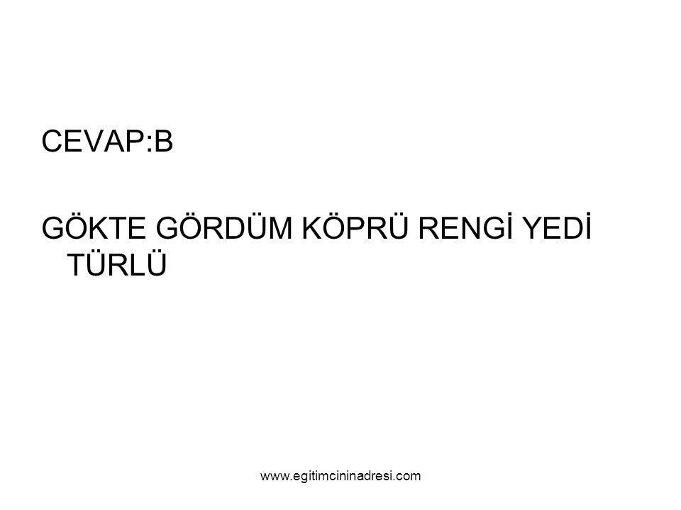 CEVAP:B GÖKTE GÖRDÜM KÖPRÜ RENGİ YEDİ TÜRLÜ www.egitimcininadresi.com
