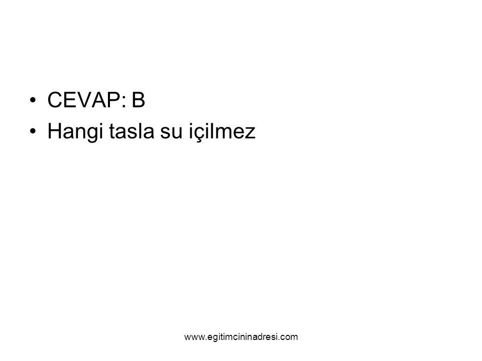 CEVAP: B Hangi tasla su içilmez www.egitimcininadresi.com