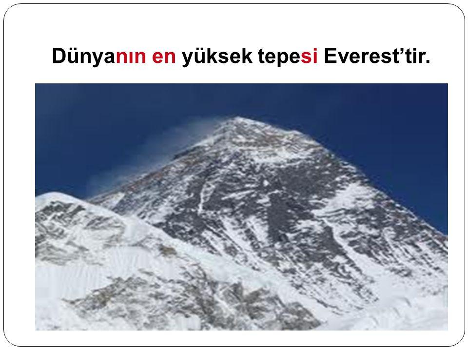 Dünyanın en yüksek tepesi Everest'tir.