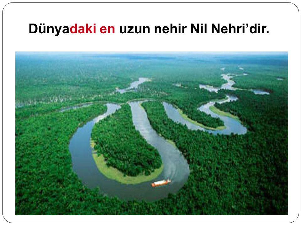 Dünyadaki en uzun nehir Nil Nehri'dir.
