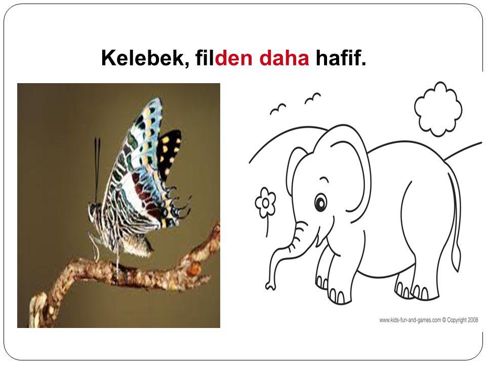 Kelebek, filden daha hafif.