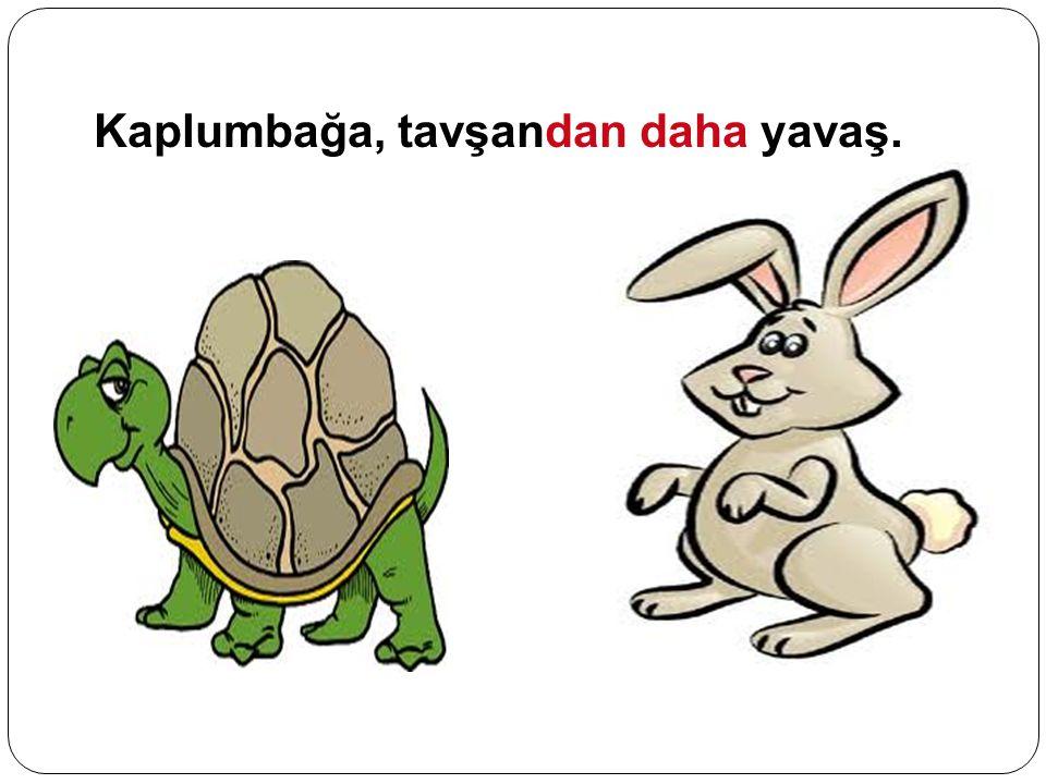 Kaplumbağa, tavşandan daha yavaş.