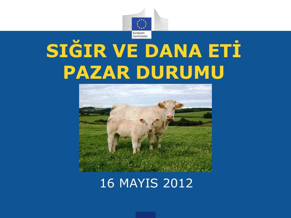 SIĞIR VE DANA ETİ PAZAR DURUMU 16 MAYIS 2012