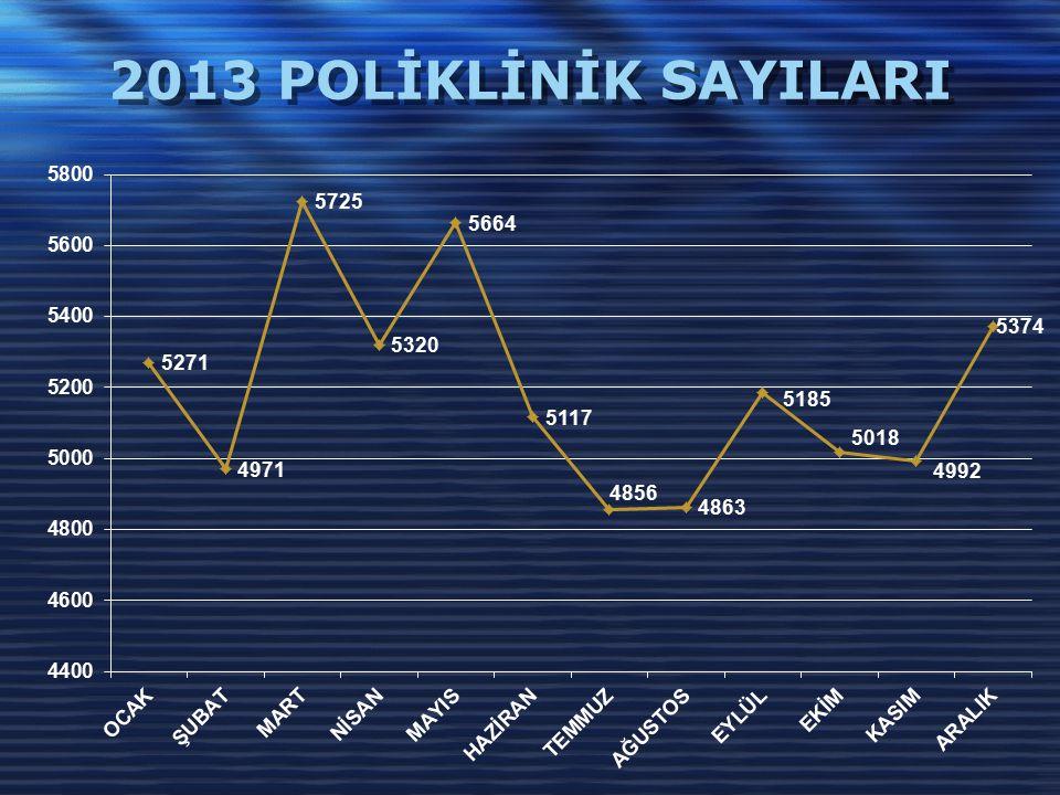 2013 POLİKLİNİK SAYILARI