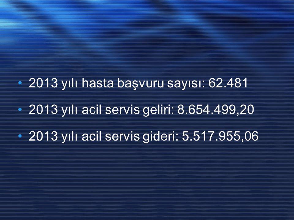 2013 yılı hasta başvuru sayısı: 62.481 2013 yılı acil servis geliri: 8.654.499,20 2013 yılı acil servis gideri: 5.517.955,06