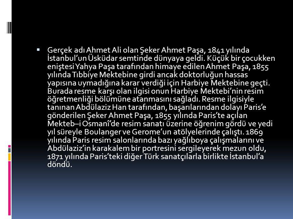  Gerçek adı Ahmet Ali olan Şeker Ahmet Paşa, 1841 yılında İstanbul'un Üsküdar semtinde dünyaya geldi. Küçük bir çocukken eniştesi Yahya Paşa tarafınd