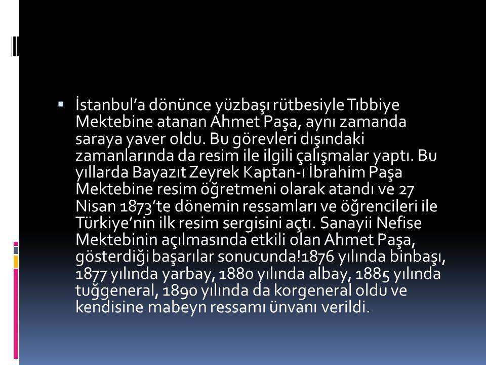  İstanbul'a dönünce yüzbaşı rütbesiyle Tıbbiye Mektebine atanan Ahmet Paşa, aynı zamanda saraya yaver oldu. Bu görevleri dışındaki zamanlarında da re