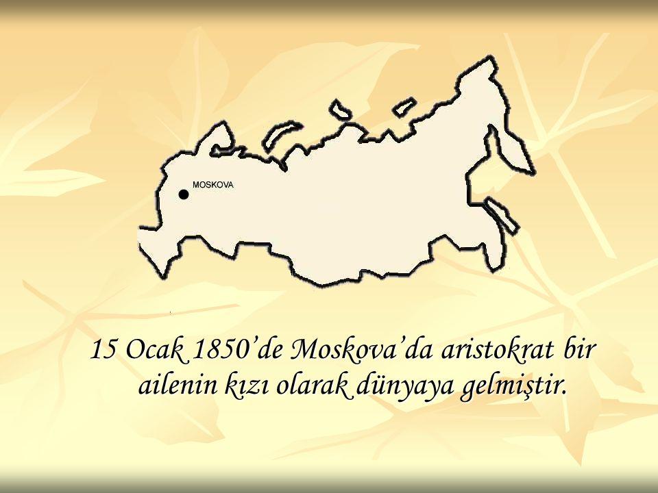 Sonya Kovalevskaya yalnızca bir matematikçi değil aynı zamanda radikal bir sosyal aktivist ve yazardır.