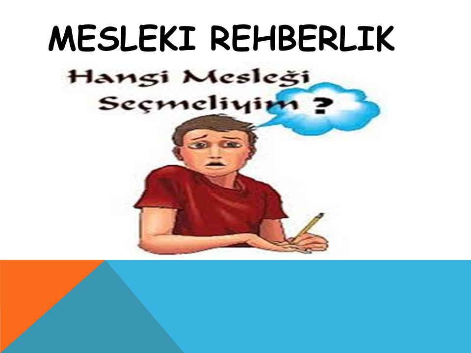 MESLEKI REHBERLIK