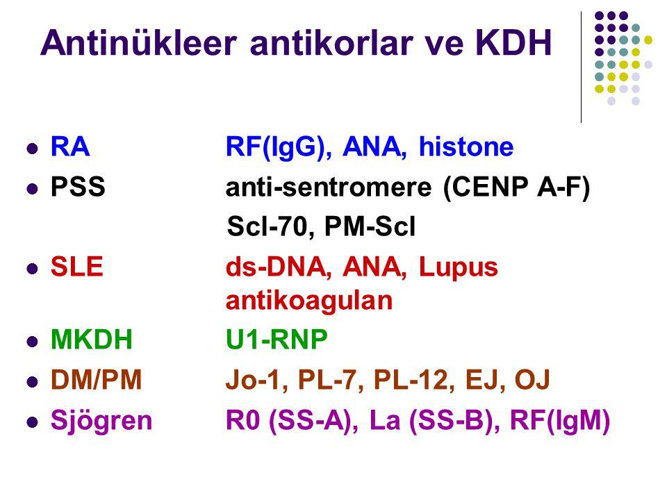 Antinükleer antikorlar ve KDH RARF(IgG), ANA, histone PSSanti-sentromere (CENP A-F) Scl-70, PM-Scl SLEds-DNA, ANA, Lupus antikoagulan MKDHU1-RNP DM/PM