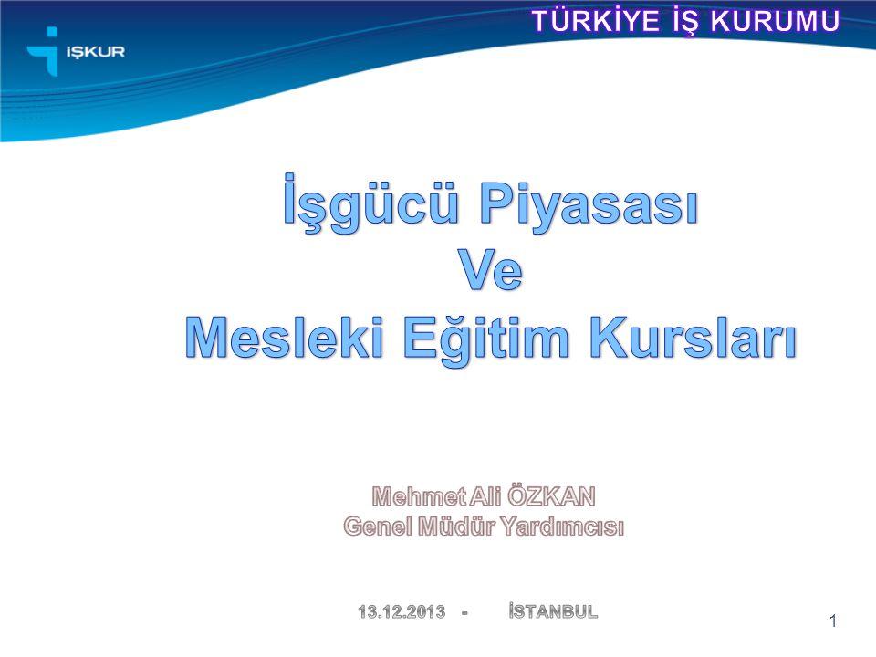 2013 Yılı I. Dönem Türkiye İşgücü Piyasası Talep Araştırması 12