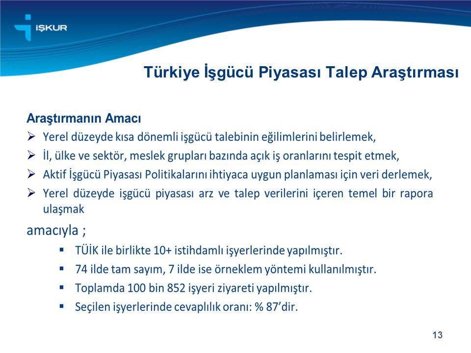 Türkiye İşgücü Piyasası Talep Araştırması 13
