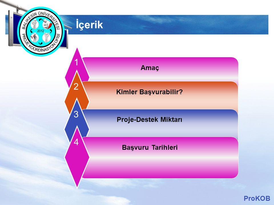 LOGO Amaç:  100 deneyimli bilim insanına/araştırmacısına Türkiye' deki üniversiteler, kamu-Ar-Ge birimleri ve sanayi kuruluşlarında kadrolu istihdam edilmesine, araştırma yapmalarına olanak sağlamaktadır.