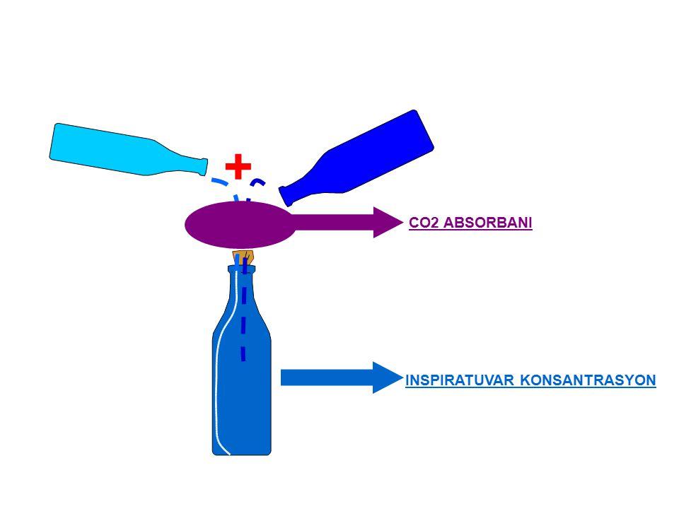 Fresh Gas + Exhaled Gas INSPIRATUVAR KONSANTRASYON CO2 ABSORBANI