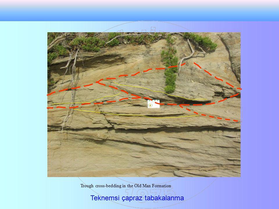 Trough cross-bedding in the Old Man Formation Teknemsi çapraz tabakalanma