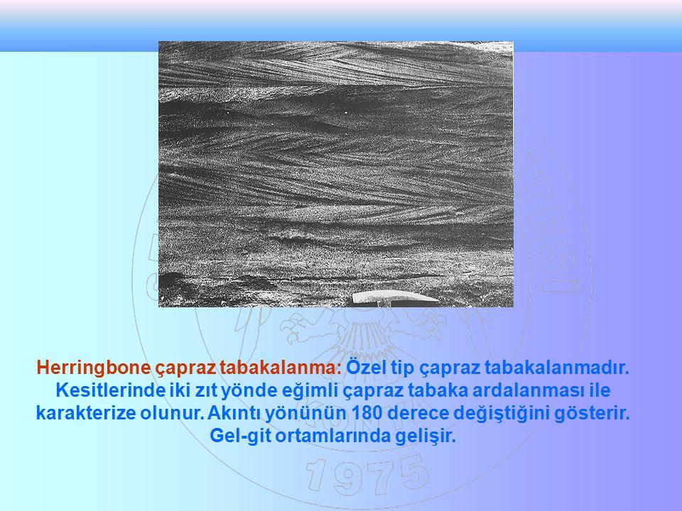 Herringbone çapraz tabakalanma: Özel tip çapraz tabakalanmadır. Kesitlerinde iki zıt yönde eğimli çapraz tabaka ardalanması ile karakterize olunur. Ak