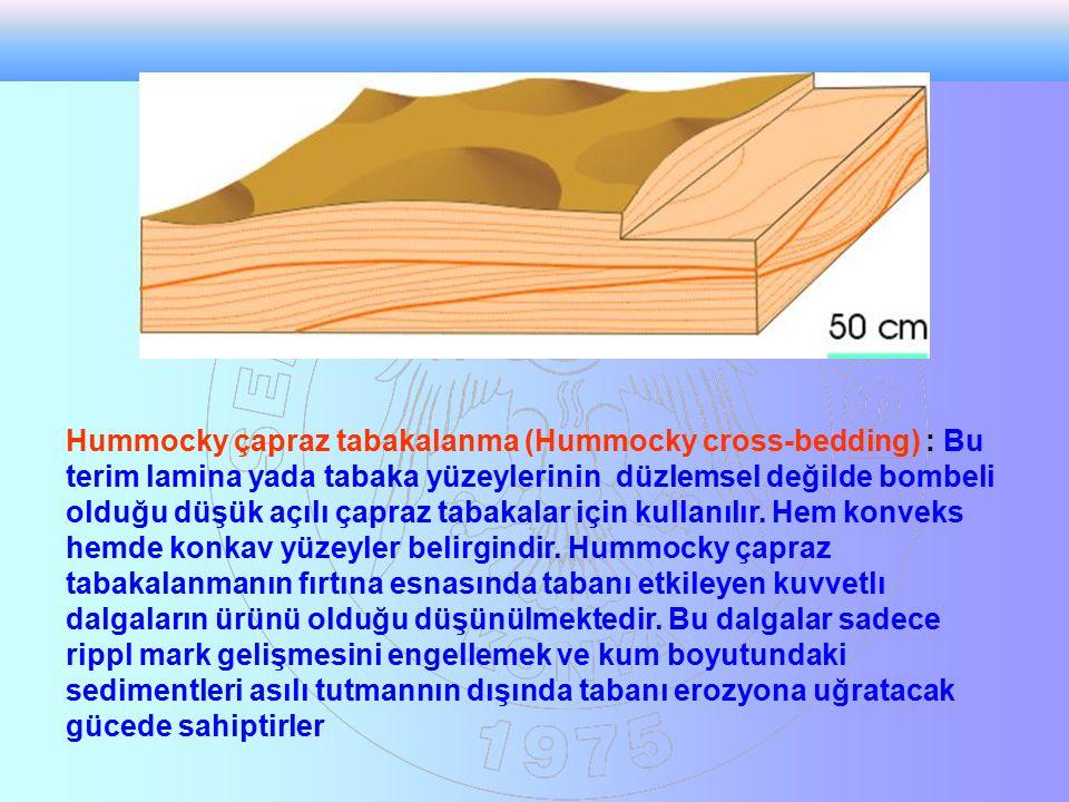 Hummocky çapraz tabakalanma (Hummocky cross-bedding) : Bu terim lamina yada tabaka yüzeylerinin düzlemsel değilde bombeli olduğu düşük açılı çapraz ta