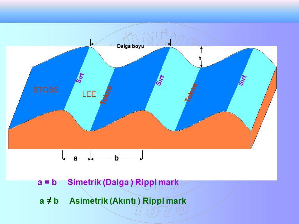 Dalga boyu h Sırt Tekne Sırt ab a = b Simetrik (Dalga ) Rippl mark a = bAsimetrik (Akıntı ) Rippl mark STOSS LEE