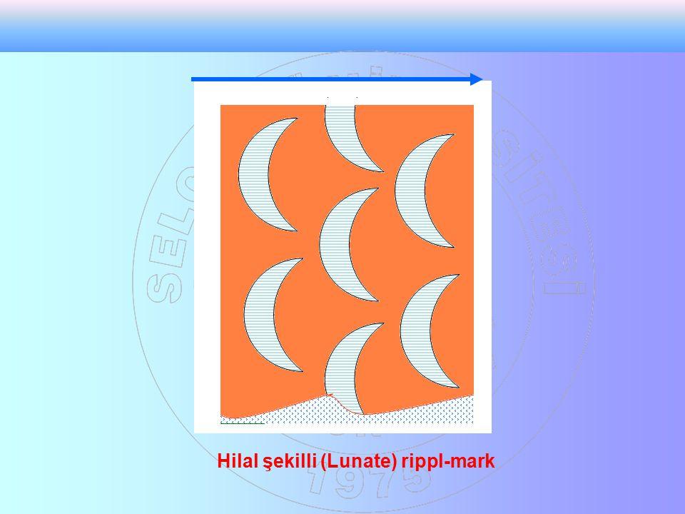Hilal şekilli (Lunate) rippl-mark