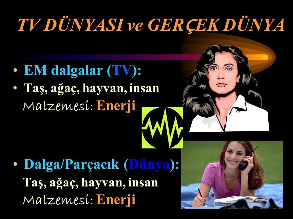TV DÜNYASI ve GER Ç EK DÜNYA EM dalgalar (TV): Taş, ağaç, hayvan, insan Malzemesi: Enerji Dalga/Parçacık (Dünya): Taş, ağaç, hayvan, insan Malzemesi: