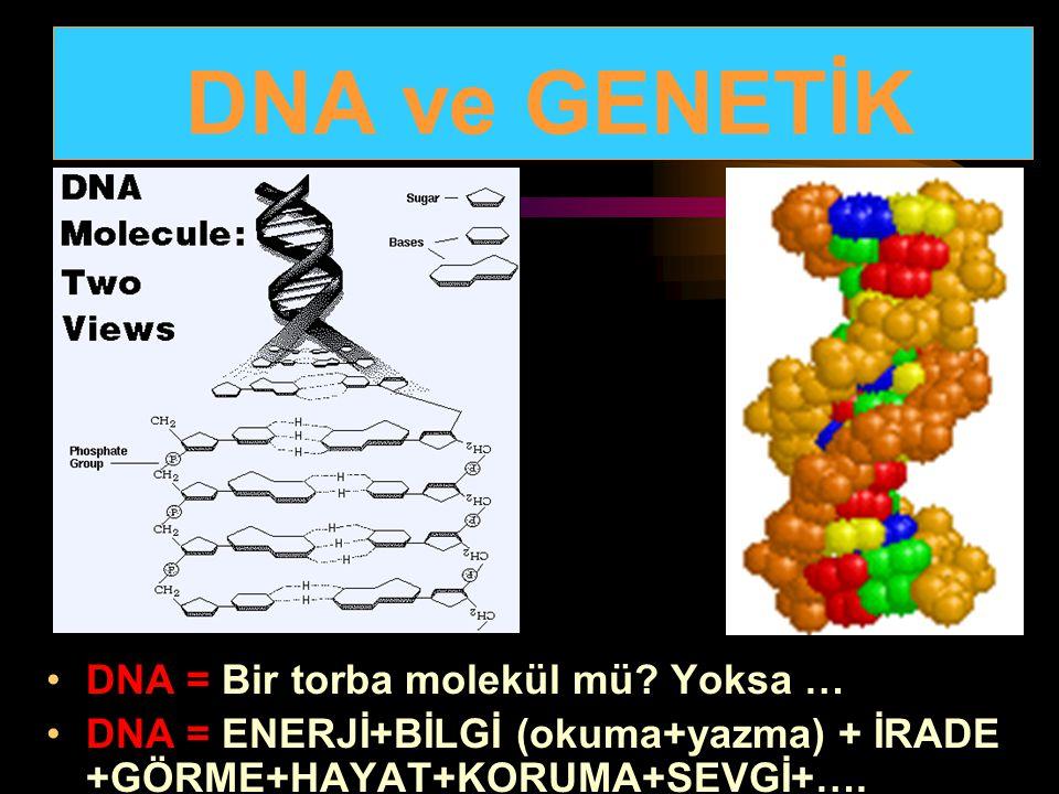 DNA = Bir torba molekül mü? Yoksa … DNA = ENERJİ+BİLGİ (okuma+yazma) + İRADE +GÖRME+HAYAT+KORUMA+SEVGİ+…. DNA ve GENETİK
