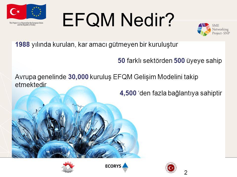 EFQM Nedir.