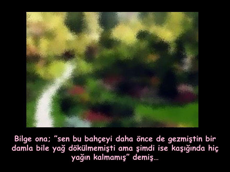 """""""Hayatımda gördüğüm en güzel bahçe bu. O çiçekler, o ağaçlar, akan sular harika"""" demiş adam…"""