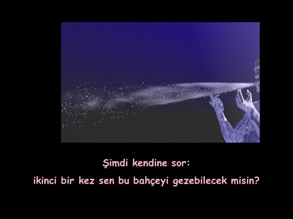 """""""HAYAT SENİN BAKIŞLARINDA GİZLİDİR"""""""